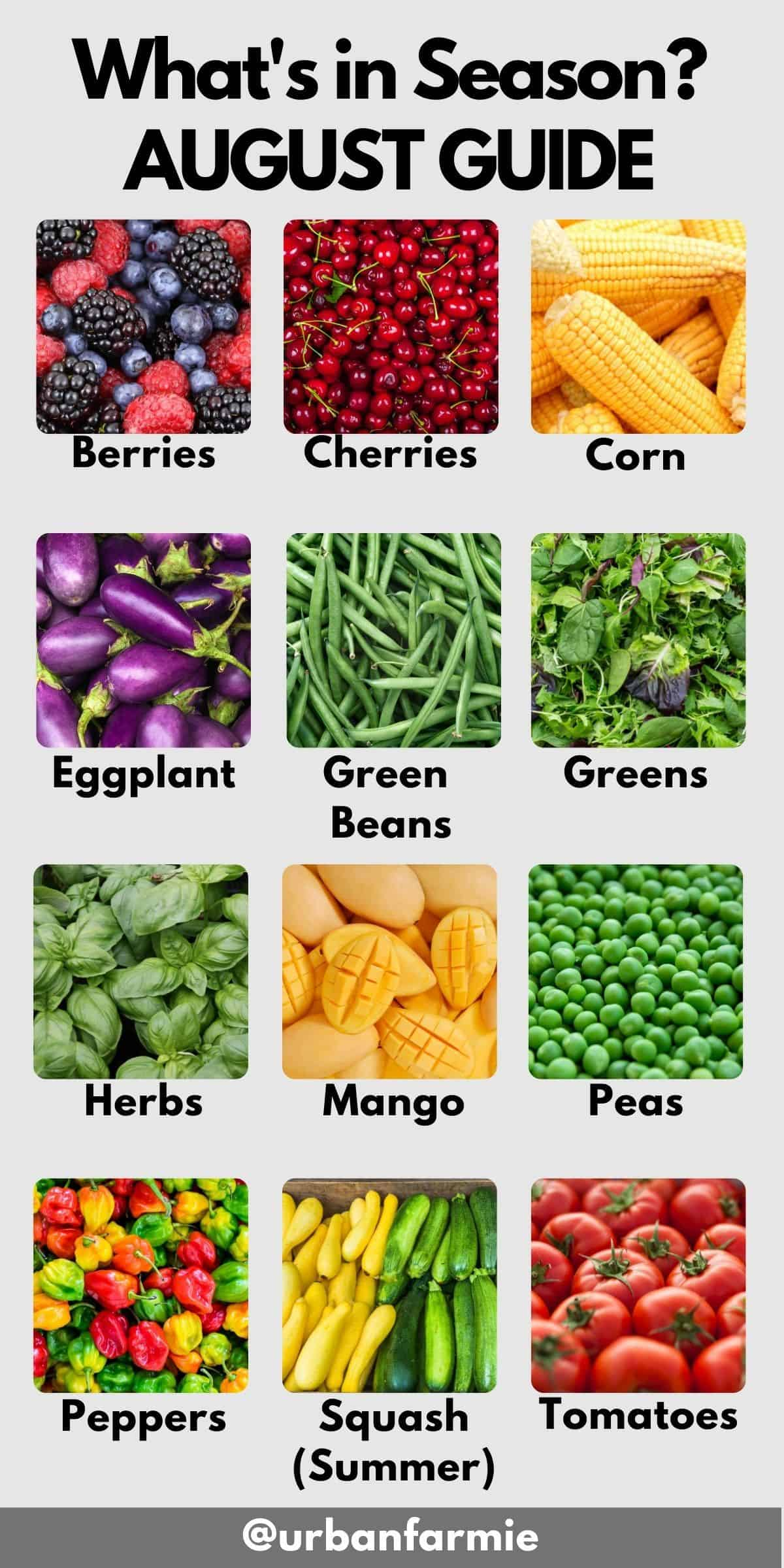 Collage showing fruits and veggies in season in August - check post for details!