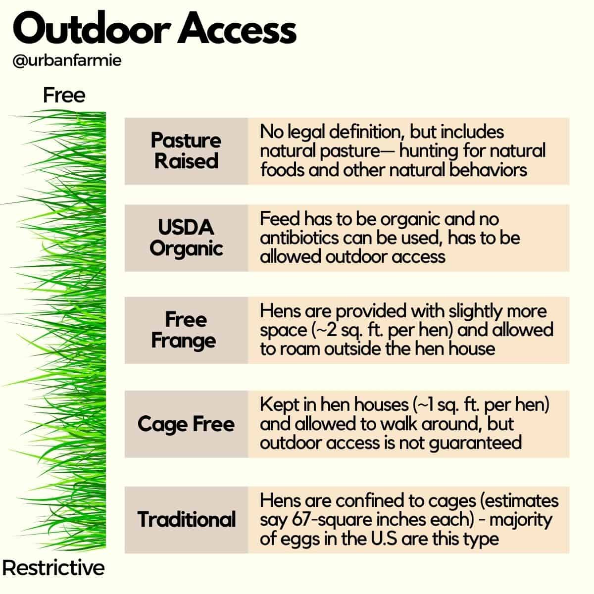 Infographic showing different outdoor access for hens