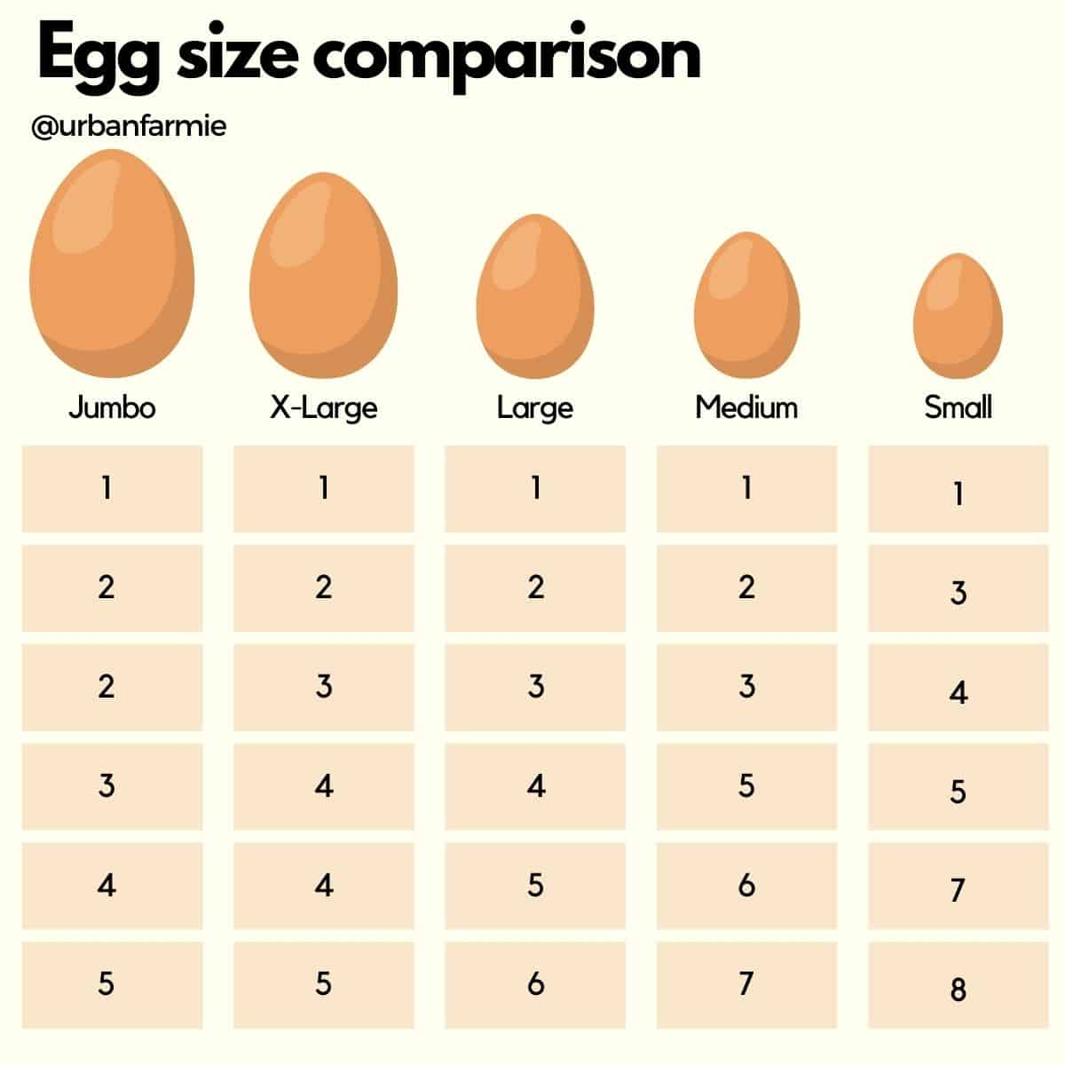 Infographic showing how to substitute different sized eggs