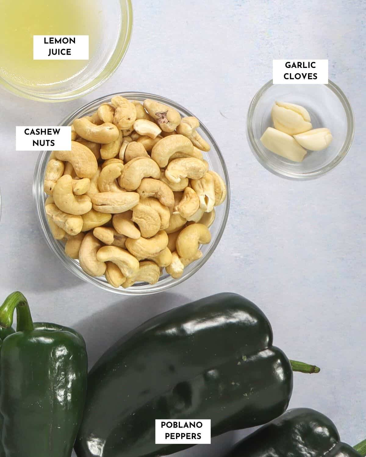 Labeled ingredients required for making poblano sauce