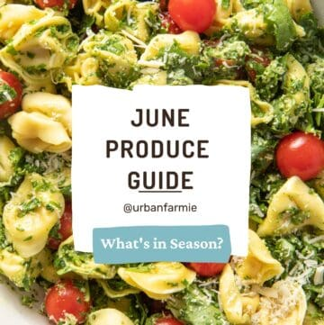 """Title image showing spinach tortellini salad in background, with text overlay """"June Produce Guide"""""""