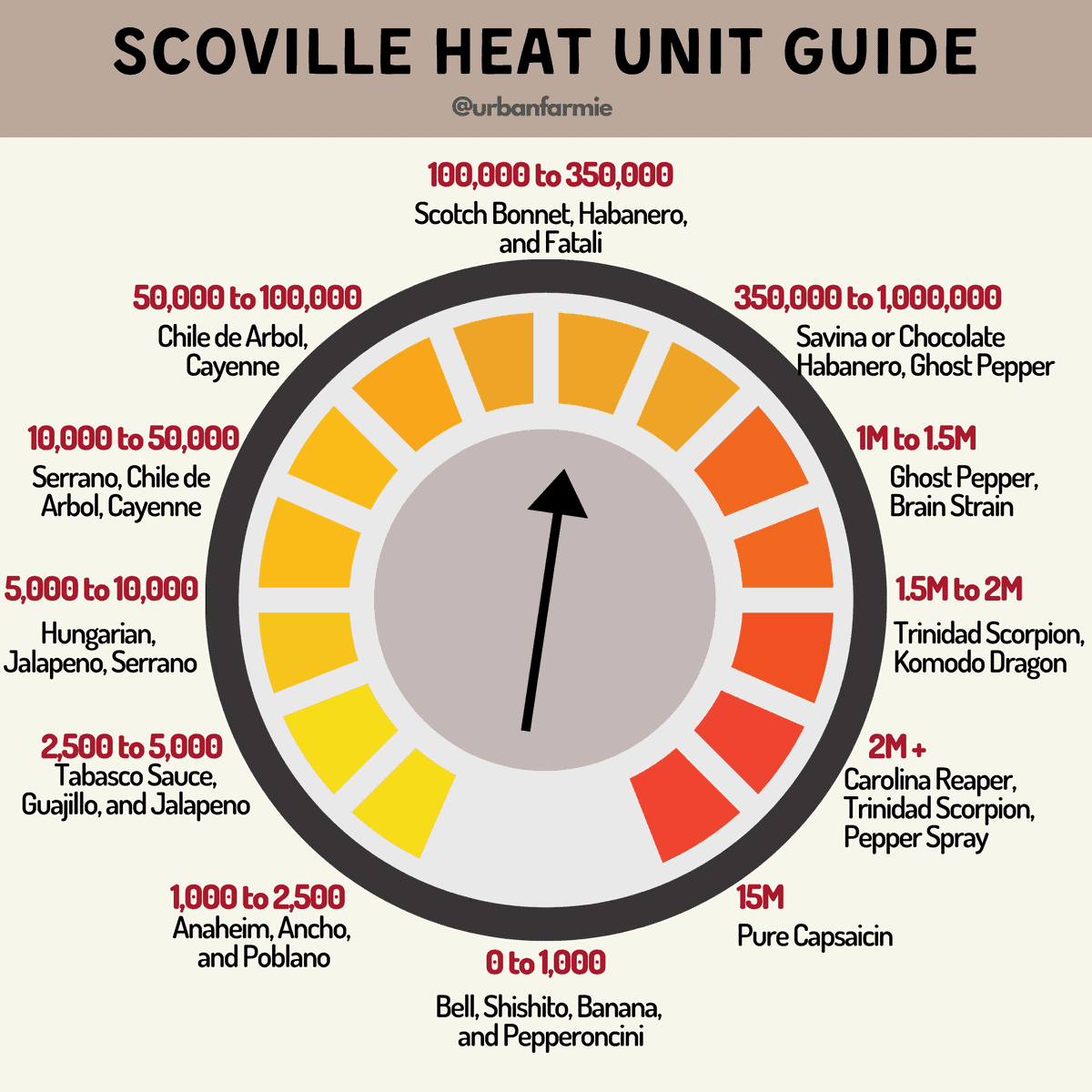 Infographic showing the Scoville Heat Scale and how different peppers rank against it.
