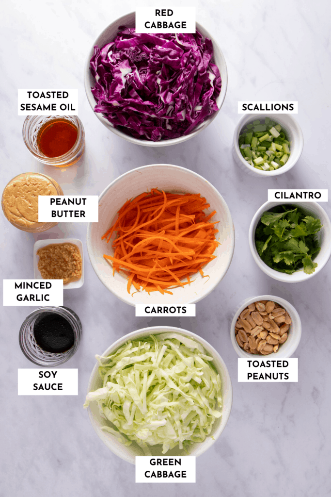 Ingredients needed for making Asian summer slaw - cabbage, carrots, cilantro, scallions, peanuts, and dressing components (peanut butter, sesame oil, garlic and soy sauce)